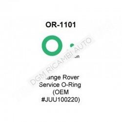 O Ring OR-1101